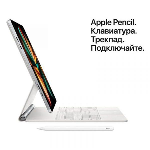 Планшет Apple iPad Pro 11 Wi-Fi 256GB (2021) Silver Серебристый (MHQV3)-5